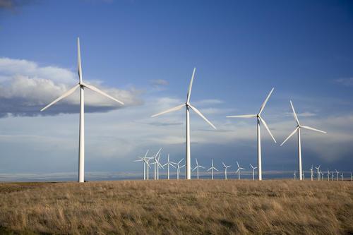 Wind-Farm-SC