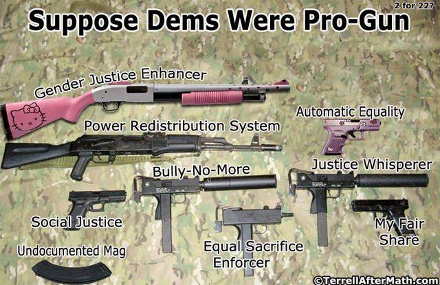 Pro Gun Democrats SC