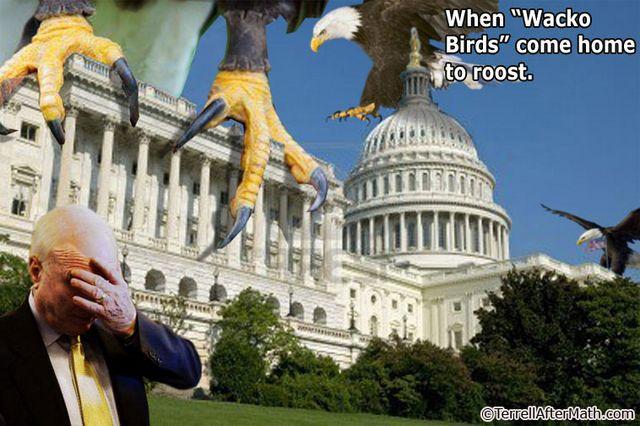 McCain Wacko Birds Roost SC