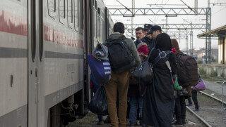 Image credit: Chat des Balkans / Shutterstock.com