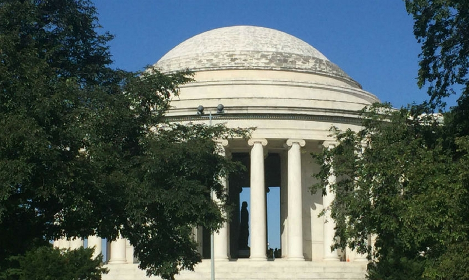 Biofilm on the dome of the Jefferson Memorial. Credit: National Park Service