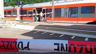 switz train