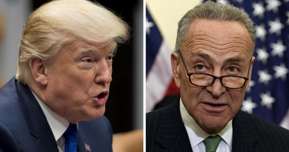 Schumer Got Massive Payout from Facebook While Defending It from Trump
