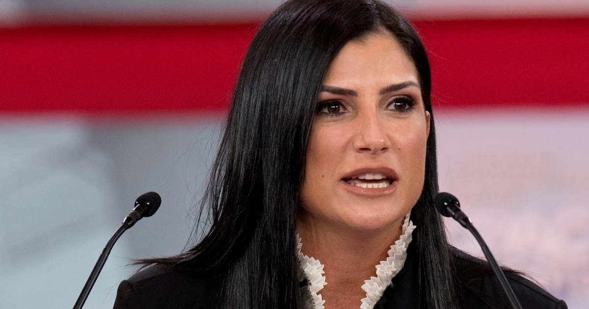 'We Need All Info:' Dana Loesch Blasts Kavanaugh Accuser over Therapist Notes