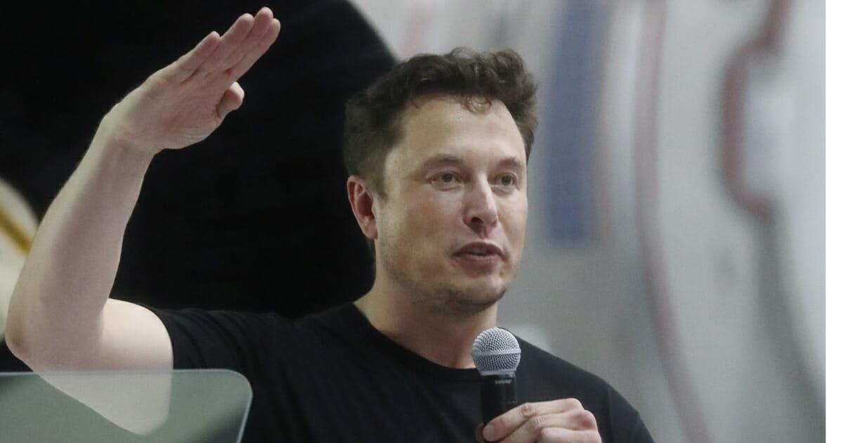 Elon Musk Releases Bizarre Rap Single About Gorilla Shot Dead by Zookeepers
