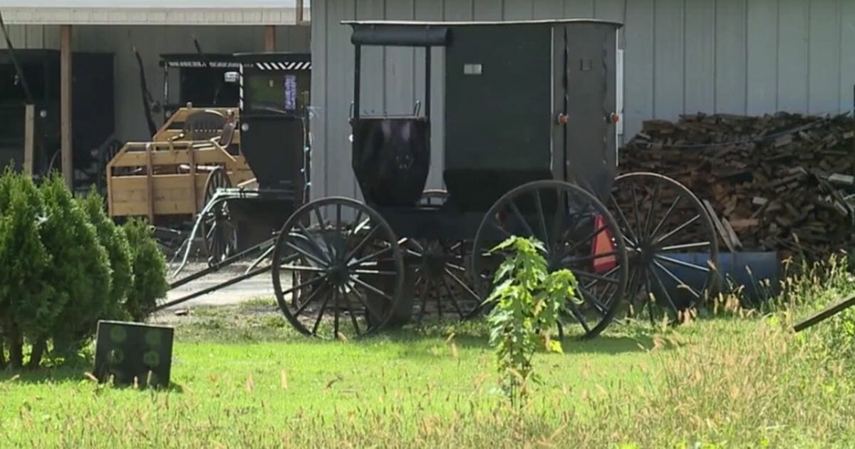 2 Amish Men, 1 Horse Flee Police After Buggy Is Pulled Over for DUI – Men Still at Large